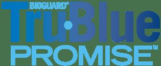 TruBlue Promise lettering colour.png